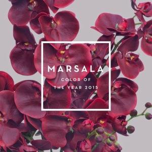 pantone colore 2015 marsala vita su marte 07